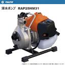 RAP25HM31